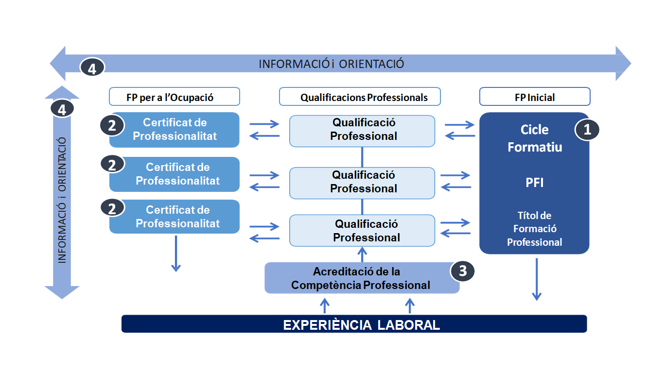 esepdual acreditacio de competencies